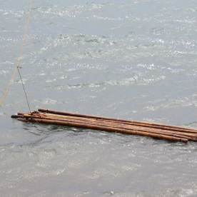 why is this bamboo in the water?