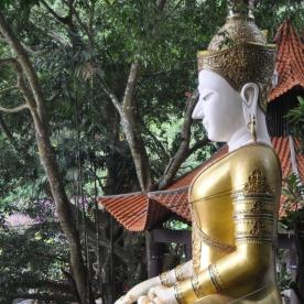 (Doi Suthep, Thailand)