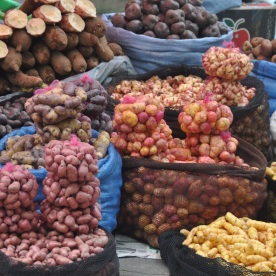 there are 4000 different variaties of patatoes in the Andes (La Paz, Bolivia)