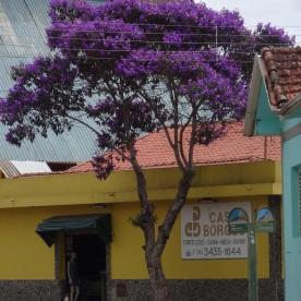 (Extrema, Brazil)