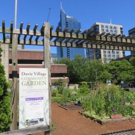 community garden (Vancouver, Canada)