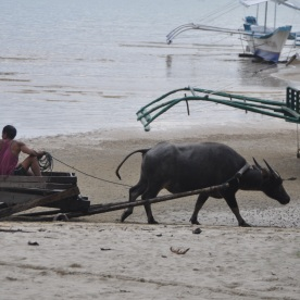 local transport (Port Barton, Philippines)