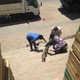 buying wood (Addis, Ethiopia)