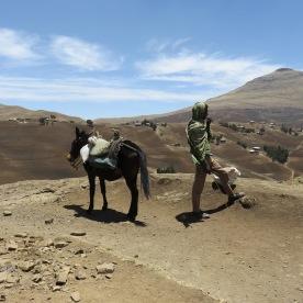 (Simien Mountains, Ethiopia)